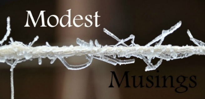 Modest_M